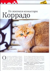 1-zolotoy-korrado-of-golden-neko-moj-drug-koshka-2013-2