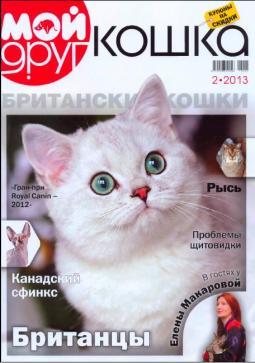 silver-ameli-of-golden-neko-moj-drug-koshka-2013-2