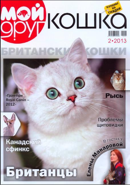 silver-ameli-of-golden-neko-moj-drug-koshka-2013-2